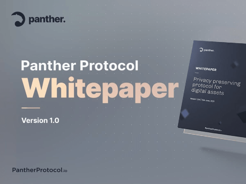 Panther Protocol Releases Ambitious Whitepaper for an End-to-End DeFi Privacy Solution