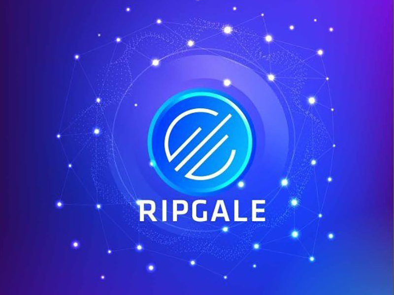 RipGale - The most expected investment platform in 2020